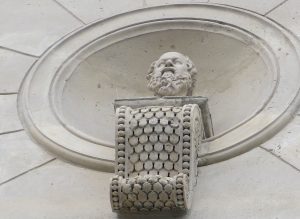 Vigogne Buste
